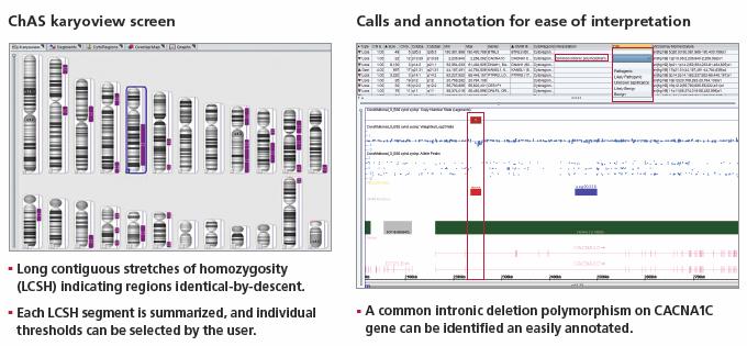 PSC(多能性幹細胞)核型解析ア...